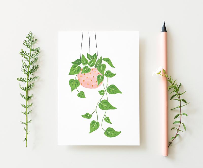 kaart epipremnum plant
