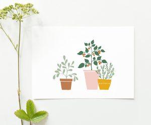 kaart planten